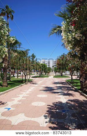 Garrucha promenade gardens.