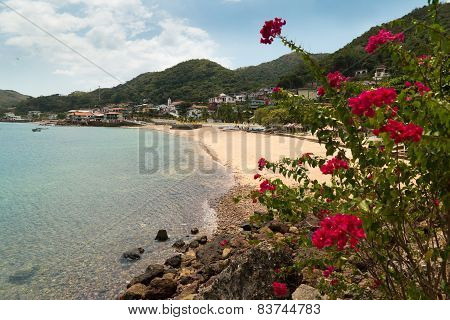 View Of Beach And Flowers Of Isla Taboga Panama City