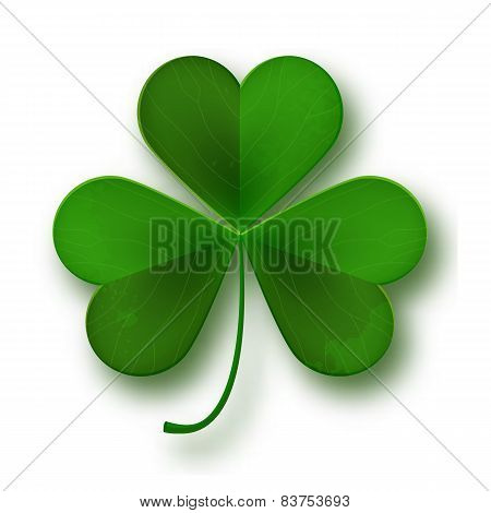 Saint Patricks Day Shamrock Leaf Symbol Isolated On White, Vector Illustration
