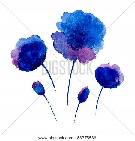 Watercolor Poppies On The White Background.