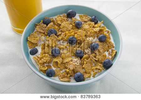 A Bowl of Breakfast Cereal with Blueberries