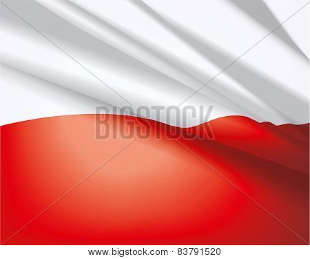 Flag Of Poland, Vector Background