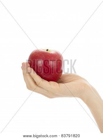 Close Up Of Hand Holding A Red Apple