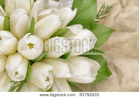 Tulip Bouquet In Wrapper