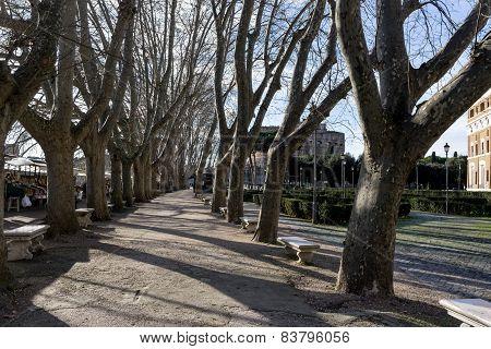 Small Market And Park Near Castle Sant Angelo