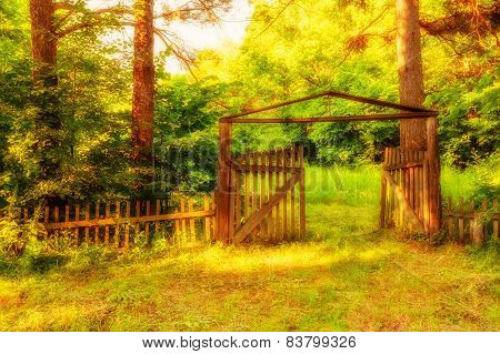 Old Wooden Gate In Forest