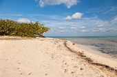 image of mile  - Seven Mile Beach on Grand Cayman Cayman Islands in the Caribbean
