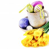 picture of daffodils  - Easter setting with yellow daffodils and decorative eggs isolated over white - JPG