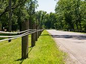 stock photo of tree lined street  - Short wooden fence posts with steel lines along empty street - JPG