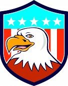 foto of bald head  - Illustration of an american bald eagle head smiling viewed from side set inside shield crest with usa flag stars and stripes in the background done in cartoon style - JPG