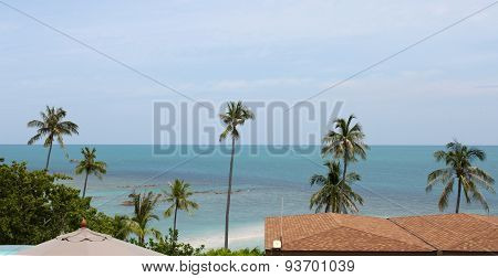 Tropical Landscape On The Island Of Koh Samui