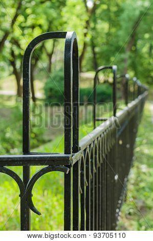 Vanishing Decorative Wrought Iron Fence Vertical View