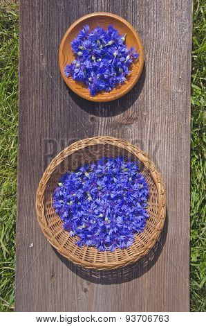 Fresh Cornflower Flowers In Two Wooden Plate