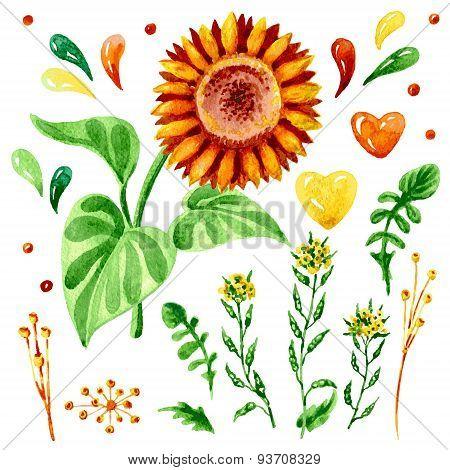 Sunflowers Set.