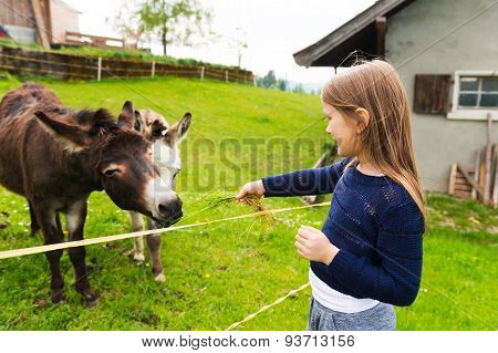 Cute little girl feeds donkey in a farm