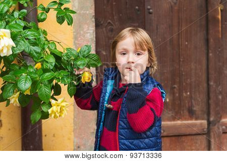 Outdoor portrait of a cute little blond boy, wearing warm pullover and waistcoat