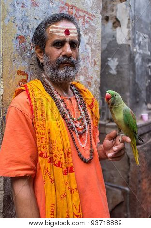 VARANASI, INDIA - 25 FEBRUARY 2015: Indian man pretending to be a sadhu holds parrot in street. Fake holy men are common on India's streets.