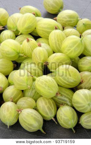 Freshly Picked Gooseberries On Slate