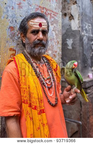 VARANASI, INDIA - 25 FEBRUARY 2015: Indian man pretending to be a sadhu holds parrot that shows wings. Fake holy men are common on India's streets.