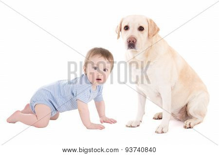 Funny Baby Boy And Beautiful Dog Golden Retriever Sitting Isolated On White