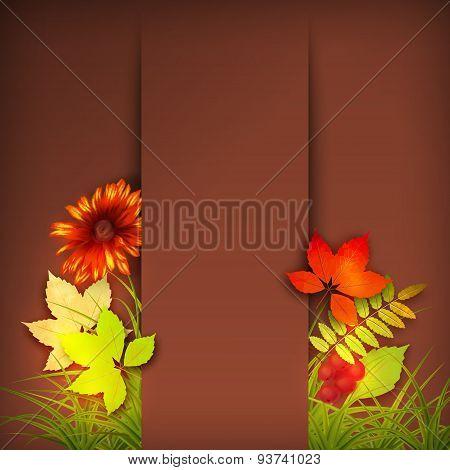 Autumn Vector Fall Leaves