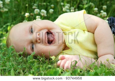 Chubby Laughing Baby Girl Laying Outside In Flower Meadow