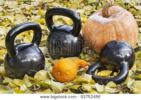 three heavy iron  kettlebells outdoors in a fall scenery  with pumpkin and squash - outdoor fitness concept