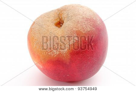 Moldy Peach On White Background