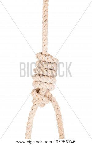 Classic loop knot