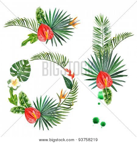 Hand drawn watercolor tropical plants - easy to use in your designs