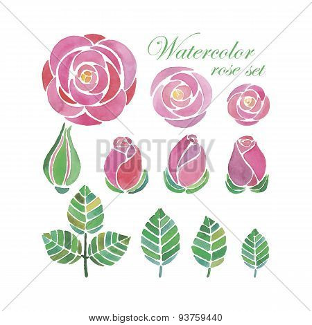 Watercolor rose flower compositions