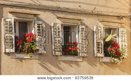 Muggia,windows Typical Of The Town.