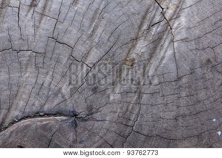 Pattern of timber