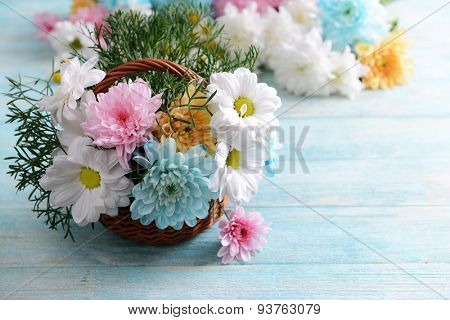 Colorful chrysanthemum in basket on wooden background