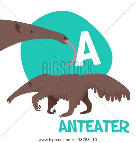 Funny cartoon animals vector alphabet letter set for kids  A is anteater.