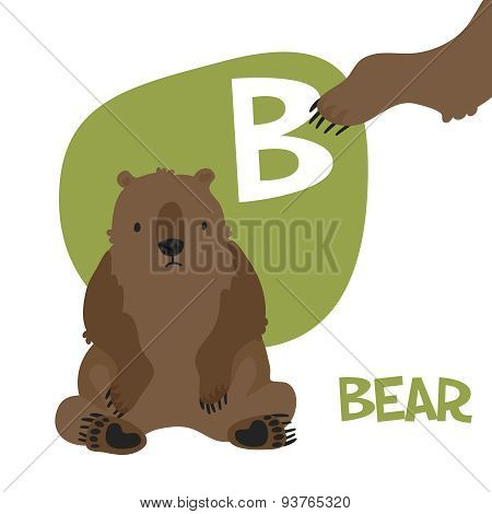 Funny cartoon animals vector alphabet letter set for kids  B is bear