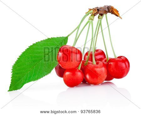 Ripe Cherry With Leaf Isolated On White Background
