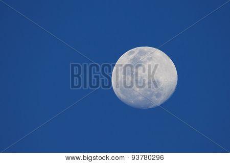Big Moon In A Night Blue Sky