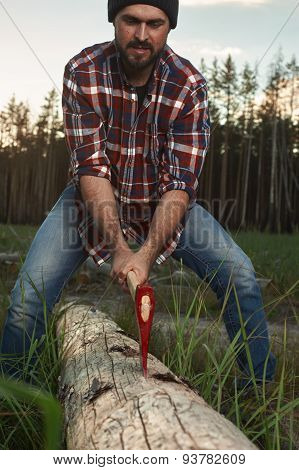 Bearded Lumberjack With Hat And Shirt Cut A Tree In Forest