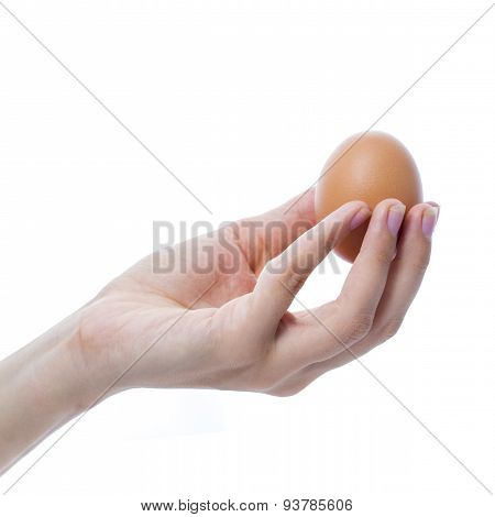 Female Hand With A Brown Chicken Egg