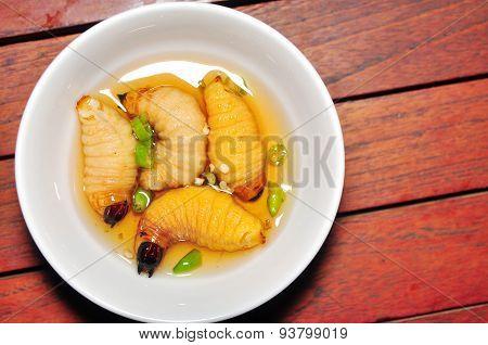 Red Palm Weevil Larva or Coconut worm or Duong dua or sago worm (Rhynchophorus ferrugineus)