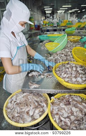 VUNG TAU VIETNAM - SEPTEMBER 28 2011: A woman worker is classifying octopus for export in a seafood