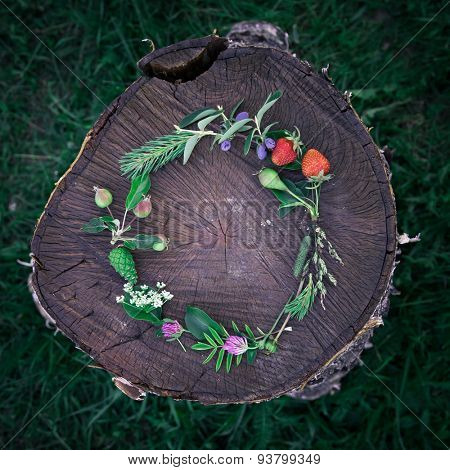 Young summer flower and fruit wreath on wooden background