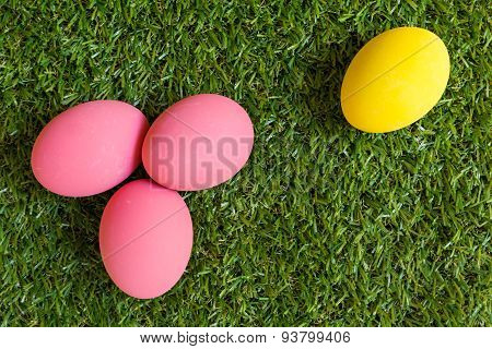 Minority Concept : One Egg Is Isolated From The Group