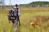 picture of swamps  - hunter with dog on the autumn swamp - JPG