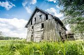 pic of abandoned house  - Abandoned wooden house surrounded by romantic nature - JPG