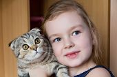 stock photo of kitty  - Image of beautiful girl with grey kitty - JPG