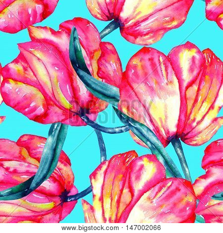 A seamless pattern with the watercolor crimson and scarlet tulips painted on a bright turquoise background
