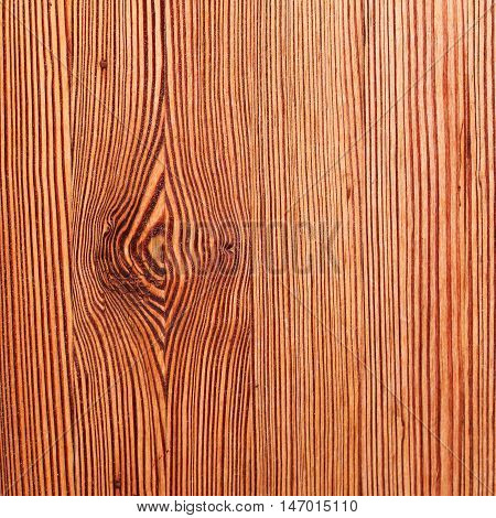 Old vintage bright textured wooden pattern. Can be used like backdrop. Rustic style.