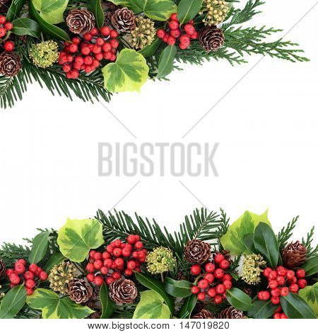Traditional christmas background border of winter flora with holly and red berries, ivy, pine cones, cedar cypress and fir leaf sprigs over white with copy space.